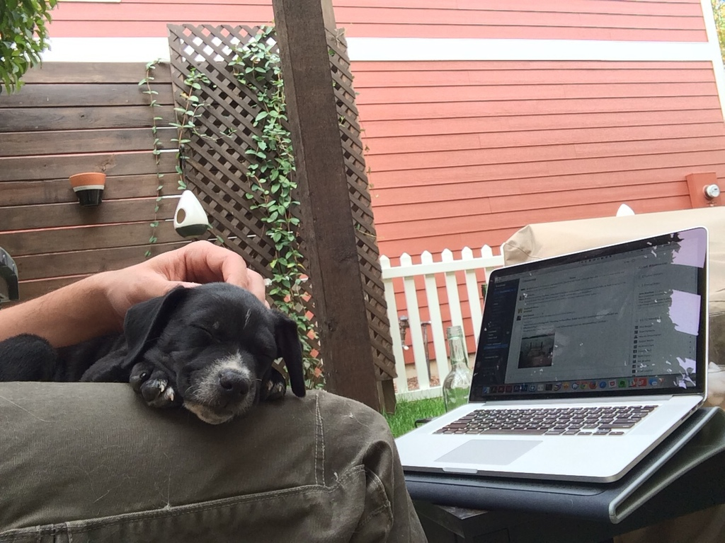 """""""Here's my current workspace with my new adopted puppy. He's a Black Lab, Beagle, Pointer mix. His name is Stout (like the beer). We also have a cat named Oatmeal so it just seemed to fit. When it's nice I like to work on our back porch and let him run around or sleep on my lap."""" - Bill Dingwall, visual designer"""