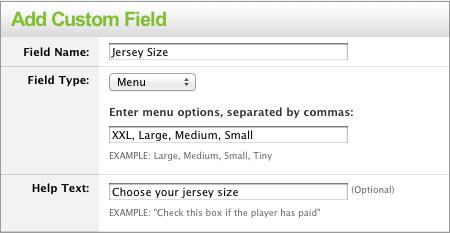 rp_custom_fields.png