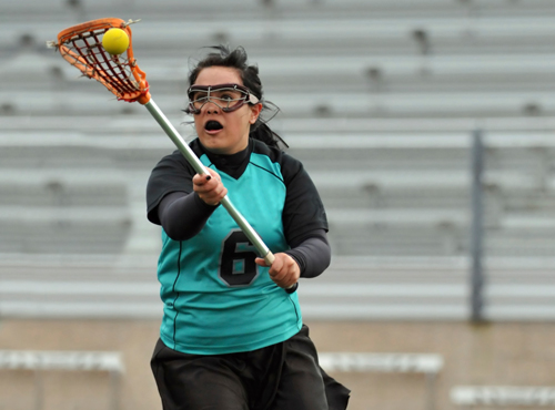 A preview image for the category: Lacrosse Catch And Throw
